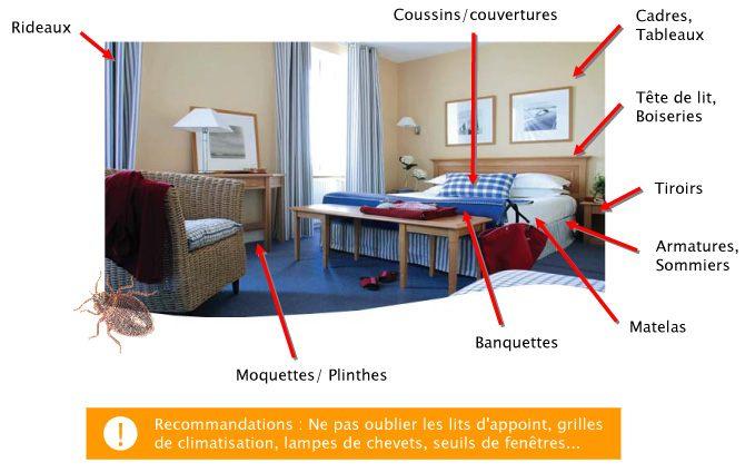 Punaise De Lit Bouton Frais Paul Colombo Page 154 Sur 231