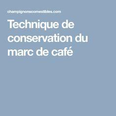 Punaise De Lit Café Moulu Inspirant 9 Meilleures Images Du Tableau Champignons