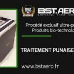 Punaise De Lit Comment Les Tuer Génial Contrats Protection Anti Insectes Bst Aero