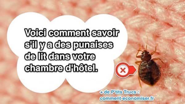 Punaise De Lit Contagieux Élégant 1111 Best Santé Images On Pinterest