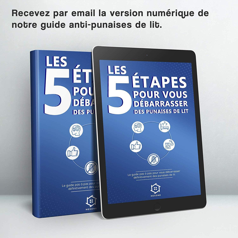 Punaise De Lit Montpellier Unique Notre Guide En 5 étapes – Ap2i