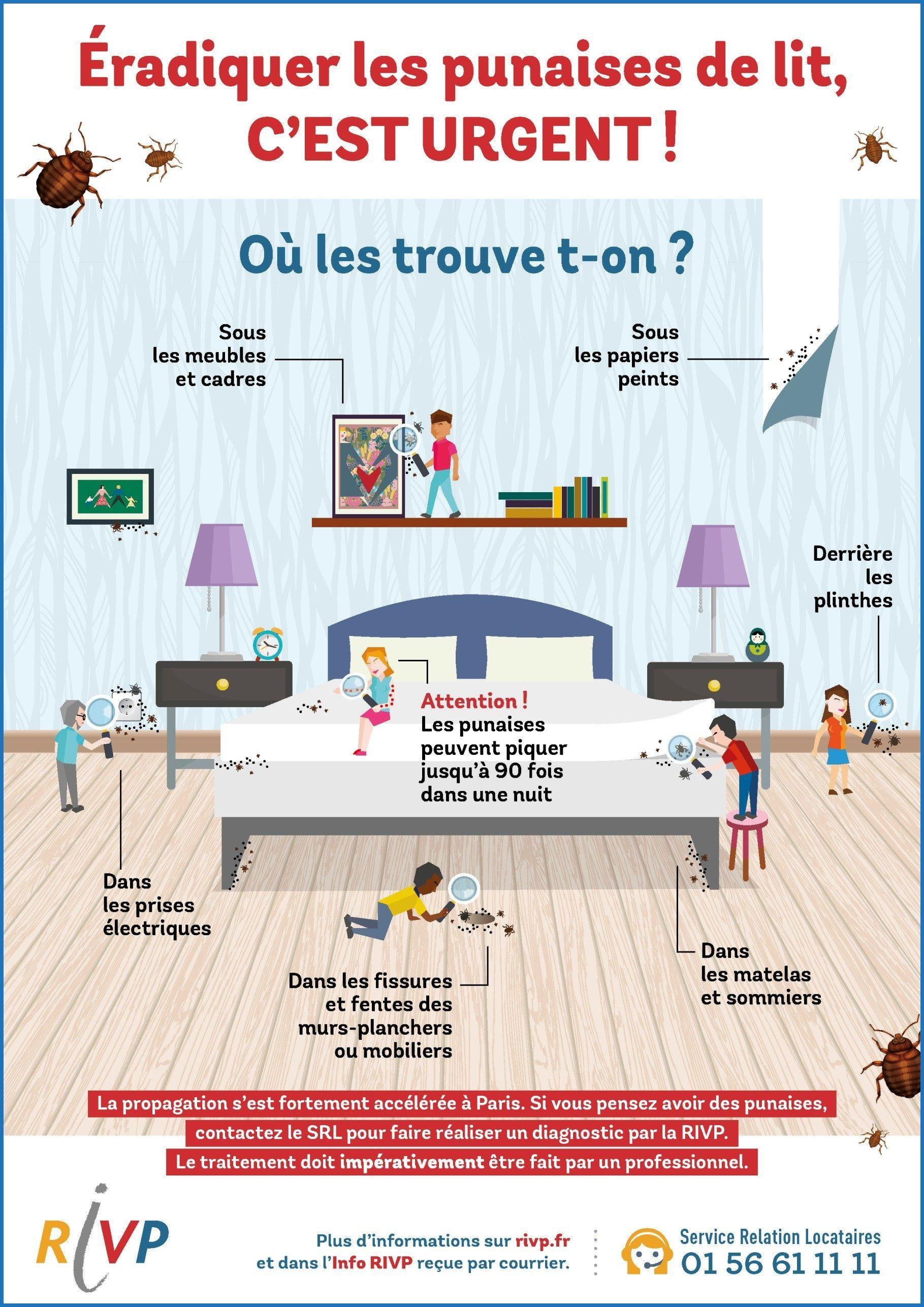 Punaise De Lit Paris Charmant Professionnel Punaise De Lit Puce De Lit Traitement Beau Housse Anti