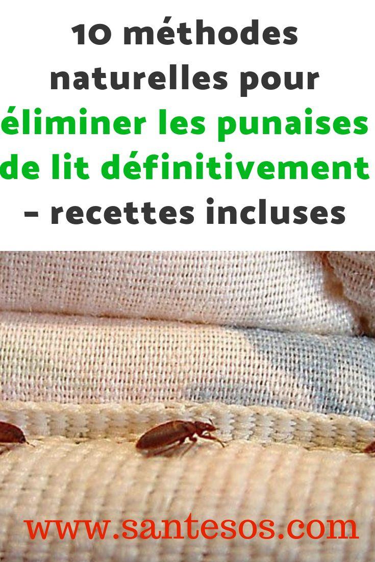 Punaise De Lit Pourquoi Luxe 10 Méthodes Naturelles Pour éliminer Les Punaises De Lit