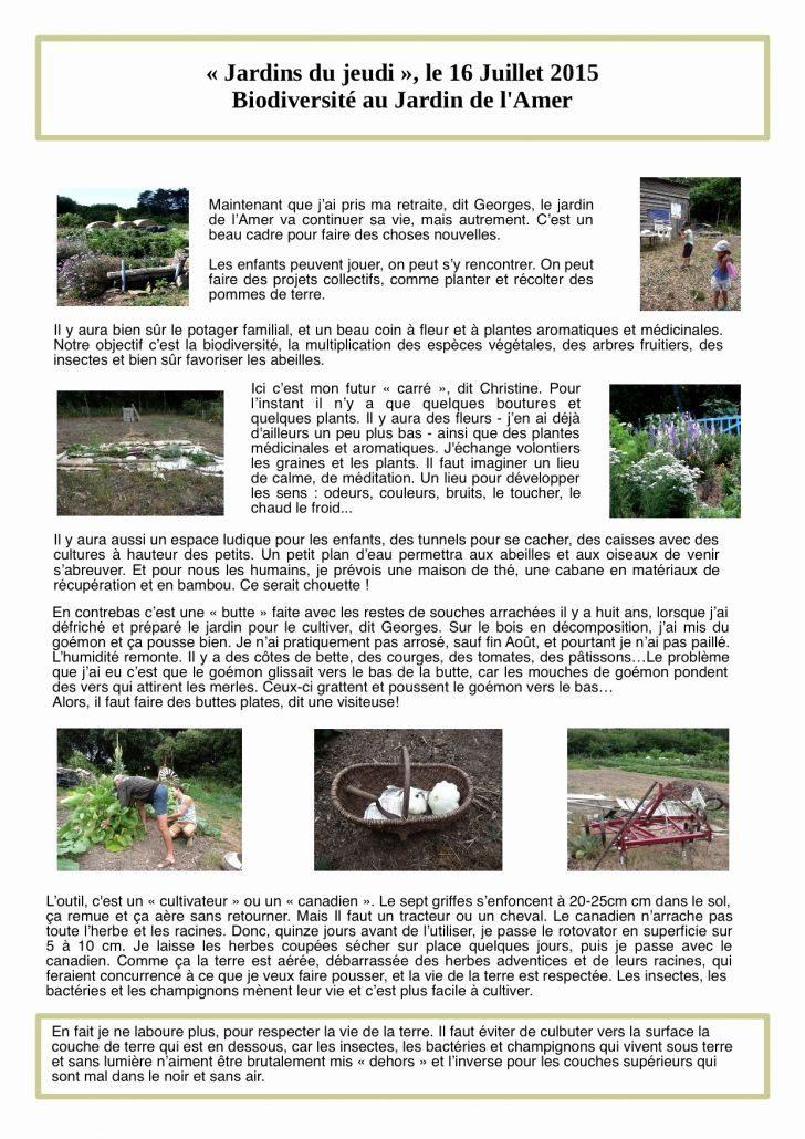 Punaise De Lit Que Faire Nouveau Punaises De Jardin Best Livinglifewrite Image – Les Idées De Ma Maison
