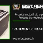 Punaise De Lit Traitement Naturel Charmant Contrats Protection Anti Insectes Bst Aero