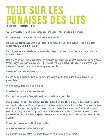 punaIses Des LITs Bed bugs