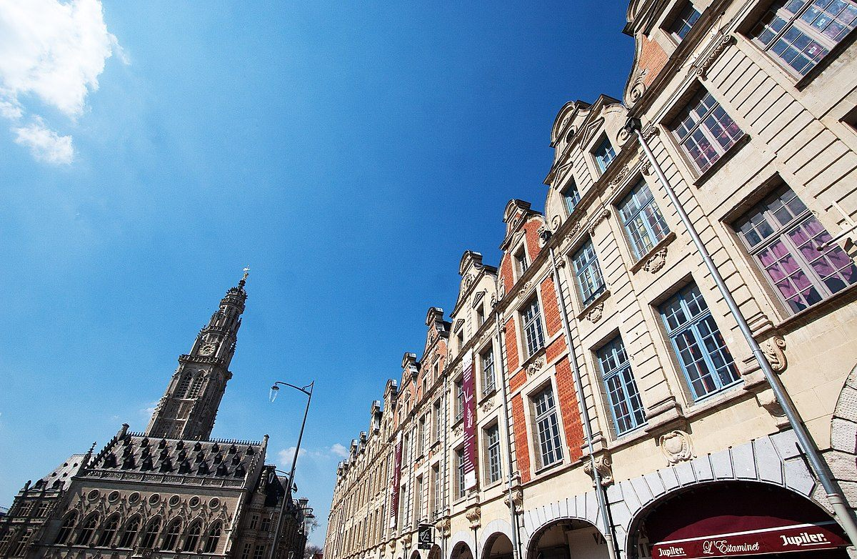 Punaise De Lit Wikipedia Bel Arras — Wikipédia
