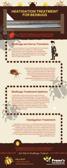 Punaises De Lit Extermination Génial 11 Best Bed Bugs Removal & Extermination Images