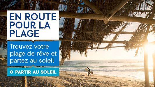 Punaises De Lit Traitement Bicarbonate Bel € Voir  Faire Vos Activités  Prix Discount Avec Ebookers