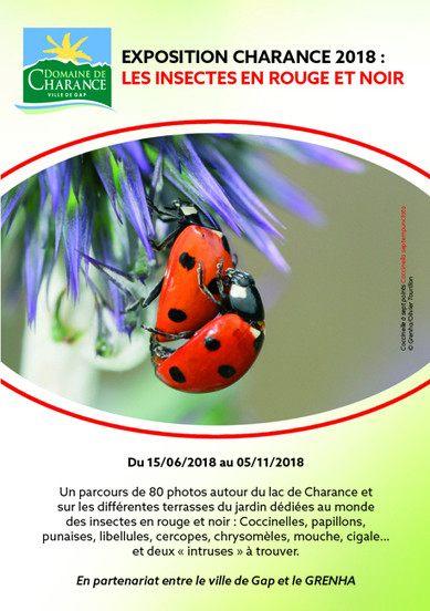 Repulsif Punaise De Lit Pharmacie Le Luxe Insecticide Contre Les Tiques Dans Le Jardin Punaise De Lit