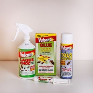 Spray Anti Punaises De Lit Insecticide Punaise De Lit