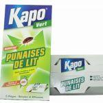 Spray Anti Punaises De Lit Nouveau Punaise De Lit Insecticide Housse Intégrale Zippée Anti Punaises De