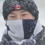 Thule Chariot Lite 2 Bel News & Headlines Yahoo News Canada