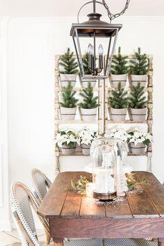 Tour De Lit Jungle Joli 84 Best Trends Indoor Plants Urban Jungle Images