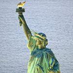 Tour De Lit Liberty Belle Royalty Free Statue Liberty New York City Hd Video 4k Stock