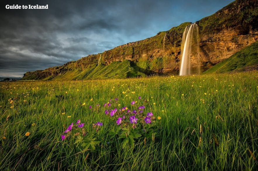 Tour De Lit Numero 74 Charmant the Perfect Camping tour Around Iceland