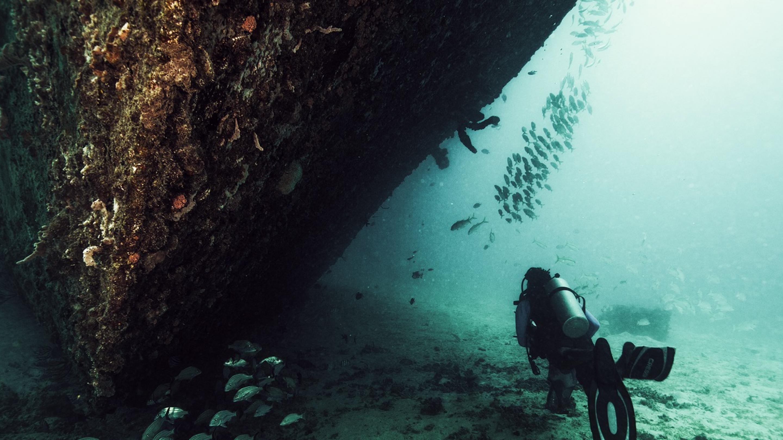 Tour De Lit Vert D Eau Beau Professional Association Of Diving Instructors