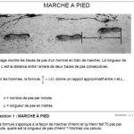 Trace Punaise De Lit Douce Annales De Didactique Et De Sciences Cognitives Pdf