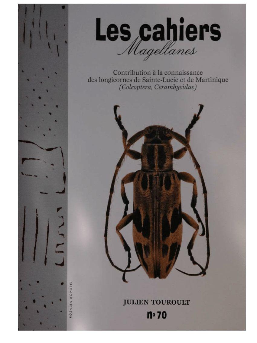 Tuer Les Punaises De Lit Pour toujours Unique Pdf Inventaire Entomologique Des Znieff De Martinique Et De La