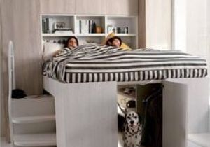 Fabriquer Lit Mezzanine Nouveau 36 Meilleures Images Du Tableau Bed for Dogs