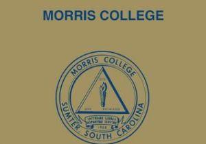Lit Bébé Gain De Place Le Luxe 2017 2018 Morris Academic Catalog by Morris College assessment
