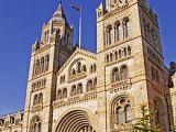 Petit Lit 2 Places Fraîche Natural History Museum London