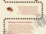 Punaises De Lit Extermination Génial 11 Best Bed Bugs Removal & Extermination Images