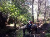 Tour De Lit Jungle Douce top 15 Things to Do In San Cristobal De Las Casas Mexico