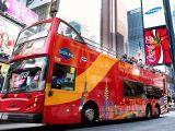 Tour De Lit Liberty Douce 5 Best Bus tours In New York City